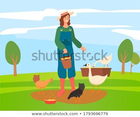 фермер женщину гусей луговой продовольствие Сток-фото © Kzenon