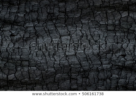 detailed texture of the coal stock photo © antonihalim