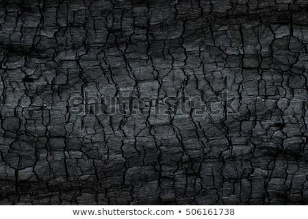 ストックフォト: 詳しい · テクスチャ · 石炭 · 地球 · 岩 · 業界