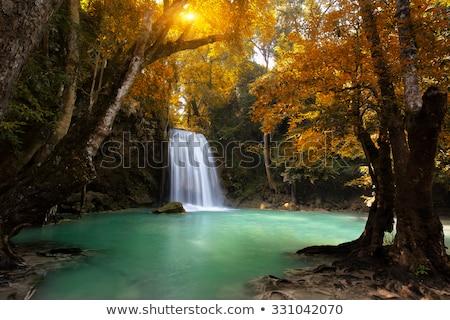 Esőerdő vízesés ősz buja színes levelek Stock fotó © mtilghma