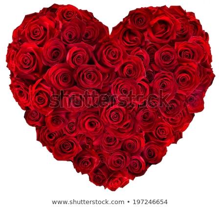 Kalp güller ikon yalıtılmış beyaz çiçek Stok fotoğraf © dayzeren