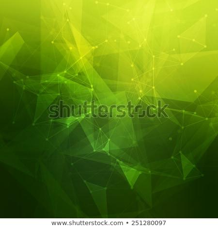 Abstrato verde seta ícone negócio bandeira Foto stock © pathakdesigner