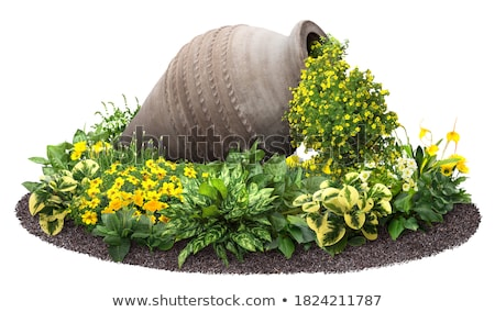 decorative bed with amphora stock photo © yaruta