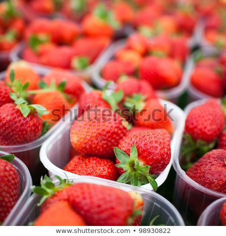 Zdjęcia stock: Rynku · świeże · truskawek · żywności · owoców