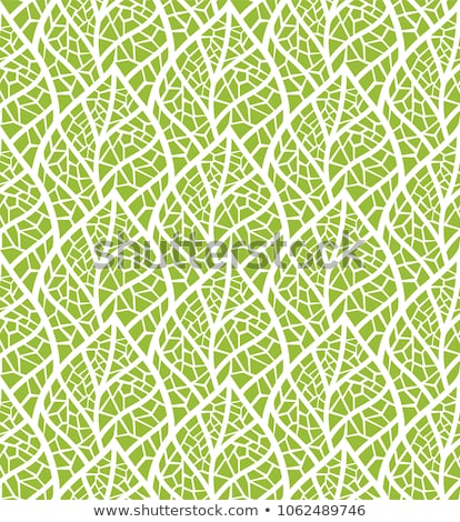 Leaf Vein and flower Petal Stock photo © devon
