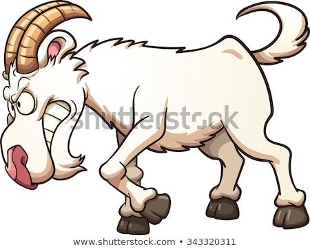 Zdjęcia stock: Zły · koza · cartoon · skok · gospodarstwa · owiec