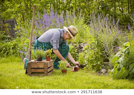 Man with spade kneeling Stock photo © photography33