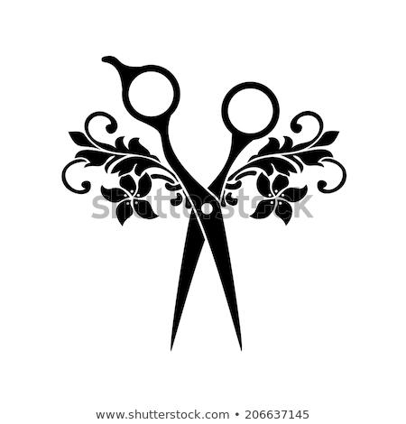 profesional · peluquero · corte · tijeras · salón · masculina - foto stock © ozaiachin