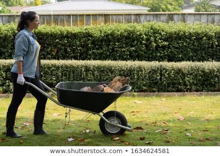 女性 手押し車 建設 女の子 業界 作業 ストックフォト © photography33