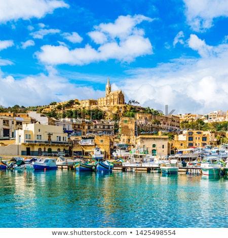 Krajobraz wyspa Malta słońce dziedzinie zielone Zdjęcia stock © ElinaManninen