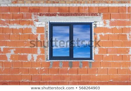 Standard windows  in mass plastic house Stock photo © vavlt