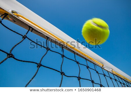 Tennis balls scattered over tennis court Stock photo © zzve