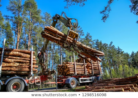 Timber Trailer and Stack of Logs  Stock photo © tainasohlman