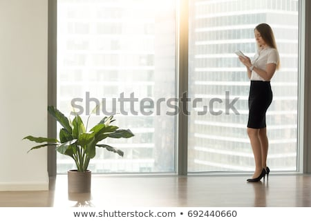 Young businesswoman with cellphone and organizer Stock photo © vlad_star