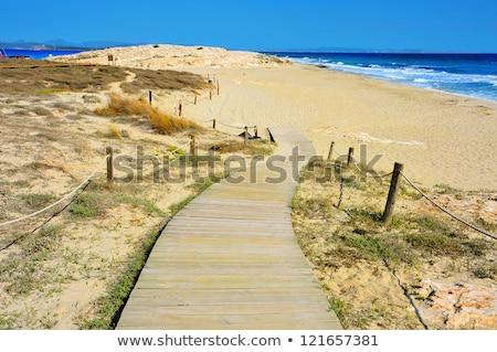 boardwalk in Formentera, Balearic Islands Stock photo © nito