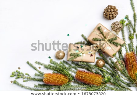 Australian Christmas Stock photo © franky242
