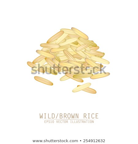 Unhulled rice stock photo © varts