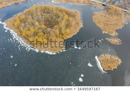 small island in the middle of a lake in a city park stock photo © ultrapro