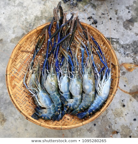Photo stock: Fresh River Prawn From The Market