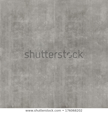 Concrete Surface. Seamless Texture. Stock photo © tashatuvango