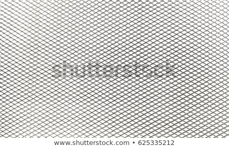 Metal Grating Stock photo © axstokes