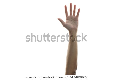 Caucasian Open hands raised for surrender Stock photo © stevanovicigor