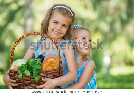 Dos niñas cesta alimentos orgánicos picnic Foto stock © HASLOO