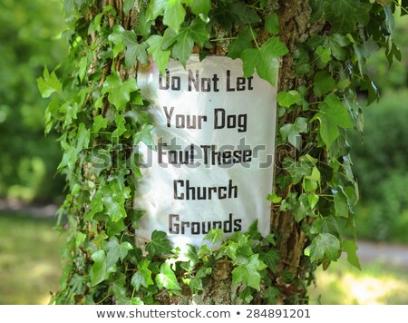 Do not let your dog foul!  Stock photo © lightpoet