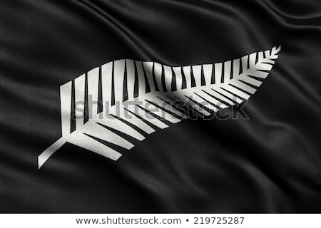 Newly proposed silver fern flag for New Zealand Stock photo © creisinger