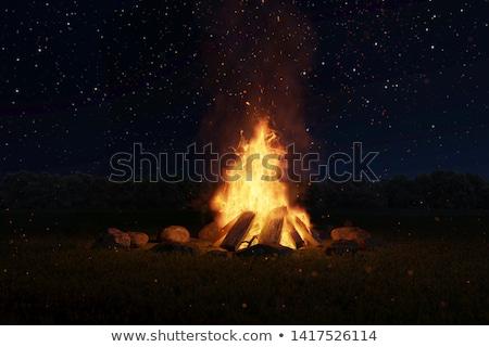 ビッグ · 燃焼 · 木材 · 自然 · オレンジ - ストックフォト © fotovika