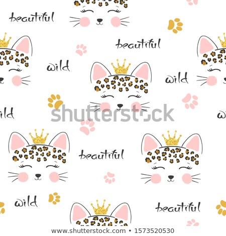 Gepárd vad macska mancs fej fejfájás Stock fotó © fouroaks