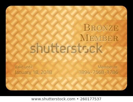 Brąz członek karty przekątna bar szablon Zdjęcia stock © liliwhite