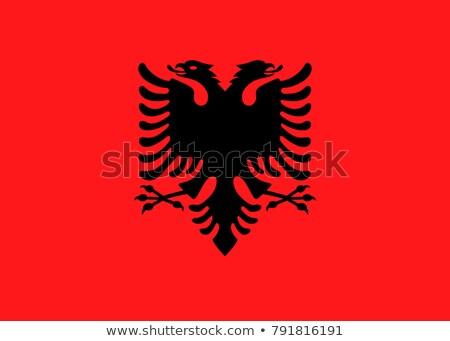 Ludzi banderą Albania odizolowany biały tłum Zdjęcia stock © MikhailMishchenko