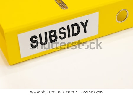 Utilities Concept with Word on Folder. Stock photo © tashatuvango