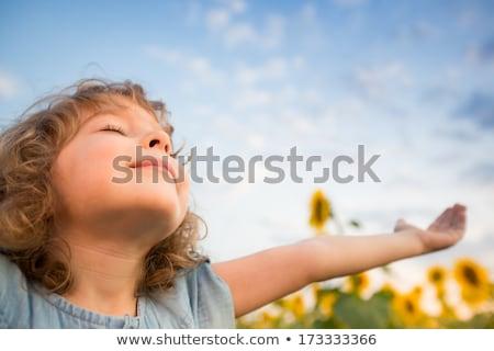 ragazza · guardando · girasole · natura · bambino · vetro - foto d'archivio © przemekklos