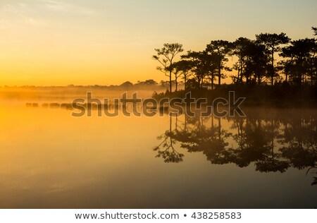 Sundown and calm lake Stock photo © Juhku