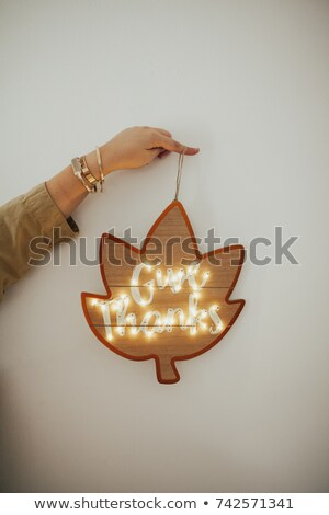 Give Thanks pillow in fall leaves Stock photo © rojoimages