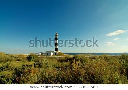 Cap latarni Błękitne niebo odkryty na południowy zachód wody Zdjęcia stock © zhekos