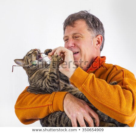 cat trying to catch the glasses of a man Stock photo © meinzahn