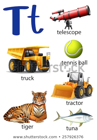 Letter T for telescope, truck, tennis ball, tractor, tiger and t Stock photo © bluering