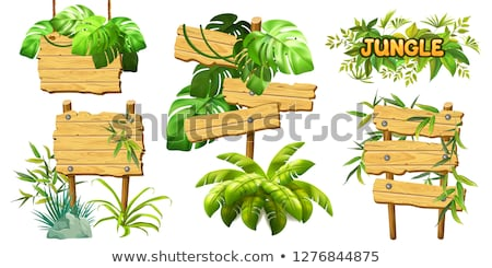 An empty signboard with leaves Stock photo © bluering