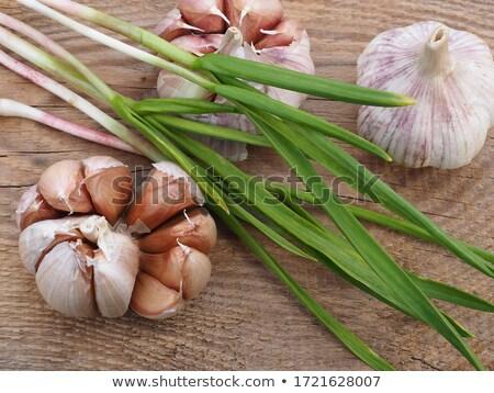knoflook · lamp · geïsoleerd · voedsel · kok · plantaardige - stockfoto © jonnysek