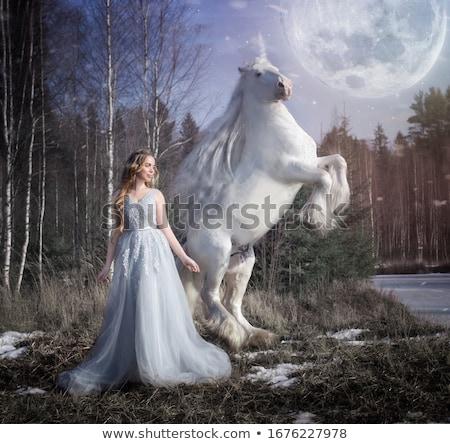 Portrait of an attractive woman on a majestic horse Stock photo © konradbak