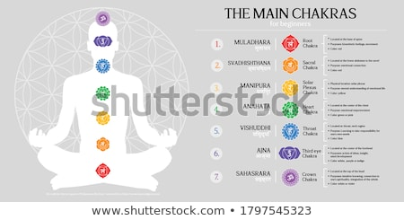illustration of seven chakras stock photo © adrenalina