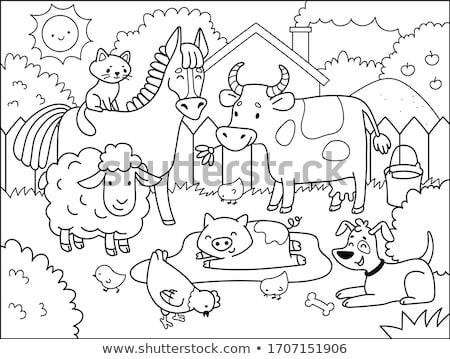 Painted Domestic Animals Stock photo © Genestro