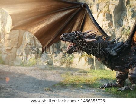 Dragon in rocks stock photo © patsm