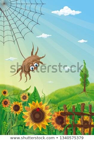 Pająki internetowych słonecznika ogród ilustracja kwiat Zdjęcia stock © bluering