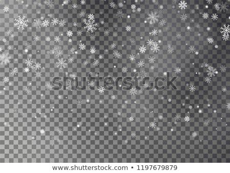 snowfall with random snowflakes in the dark stock photo © swillskill