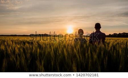 Farmer looking at the sun on the horizon Stock photo © stevanovicigor