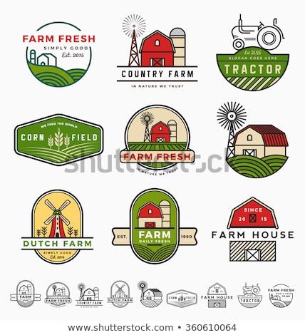 ingesteld · boeren · markt · logo-ontwerp · sjabloon · organisch - stockfoto © reftel